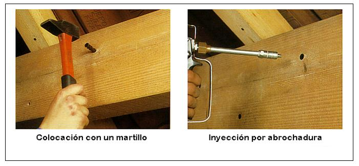 Tratamiento para eliminar carcoma valencia plaga en - Tratamientos para la madera ...